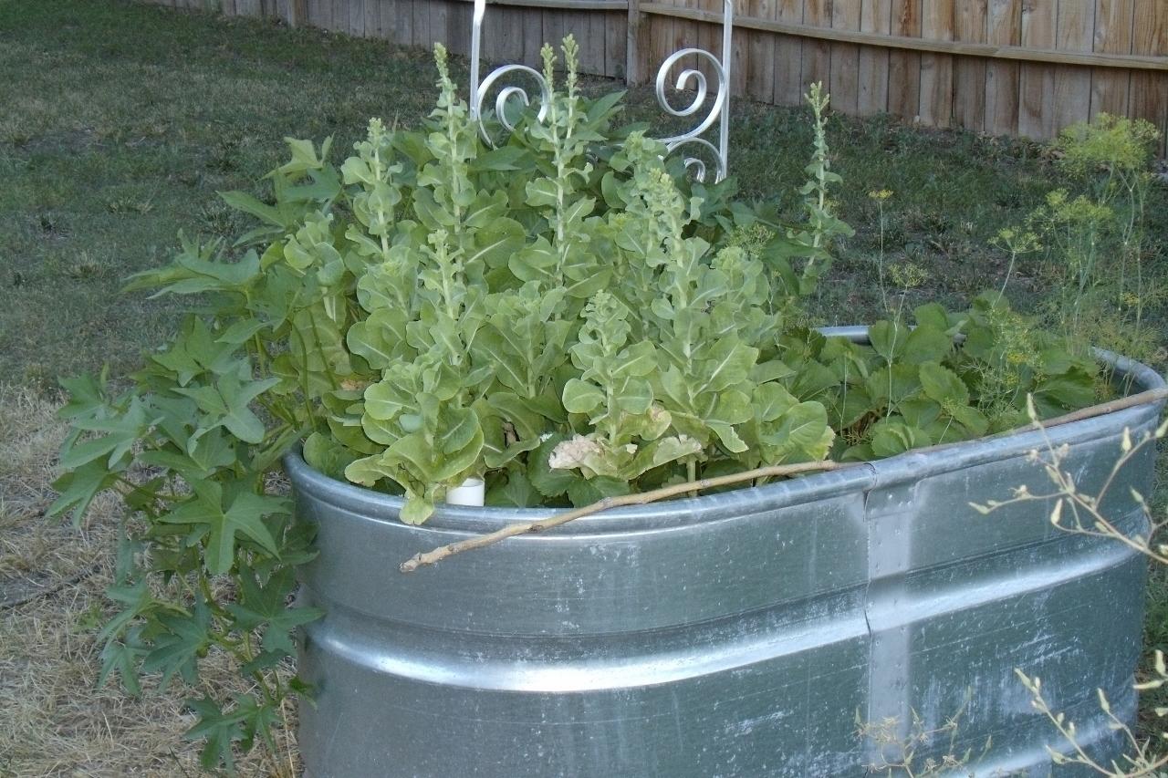 Home Depot Galvanized Buckets